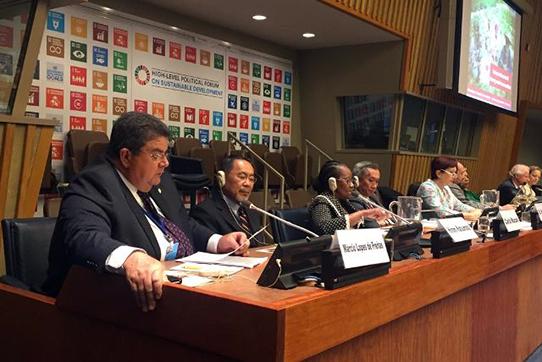 Cooperativismo mostra resultados do Dia C na ONU