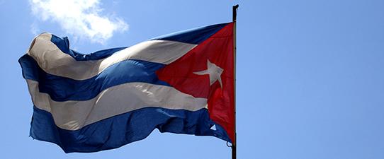 Dália recebe habilitação para exportar a Cuba