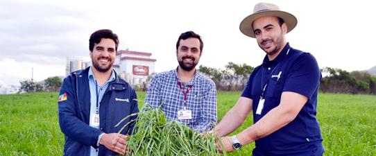 Dália Alimentos e Emater realizam estudo para avaliar relação entre massa verde e milho