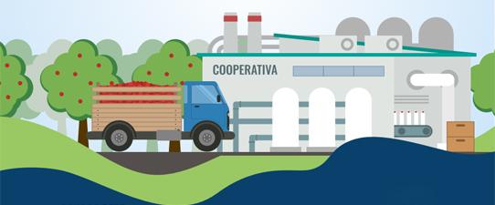 Novos CFOPS retratam as operações entre associado e cooperativa