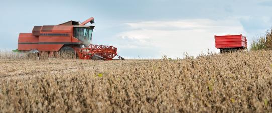 IC agro Atinge 100,3 pontos no 3º trimestre