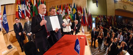 OIT reconhece cooperativas como geradoras de trabalho decente