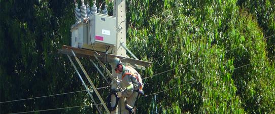 Religadores automáticos auxiliam nas redes de energia da Creral
