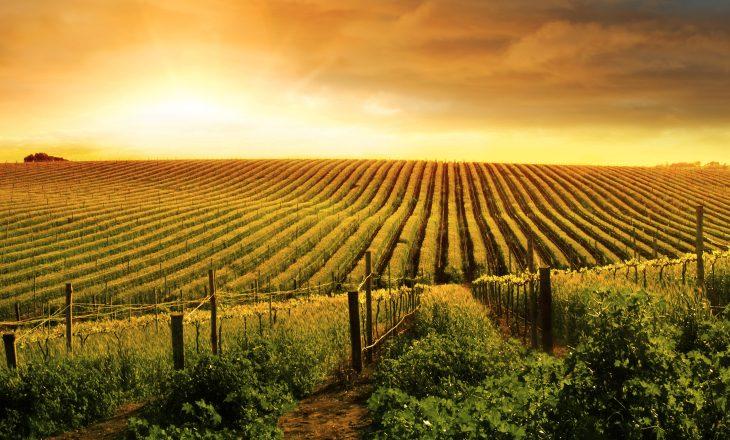 Cadastro Ambiental Rural será permanente