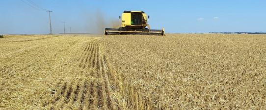 Congresso reverte veto e mantem competitividade das coops agro