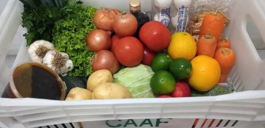 CAAF cria plataforma online para compra de alimentos da agricultura familiar