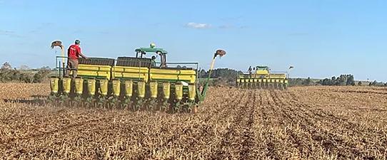 Relação de troca na soja e no milho deve favorecer produtor gaúcho