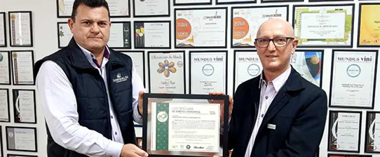 Cooperativa Vinícola Garibaldi deixa de emitir 1 milhão de toneladas de CO₂ em sete anos