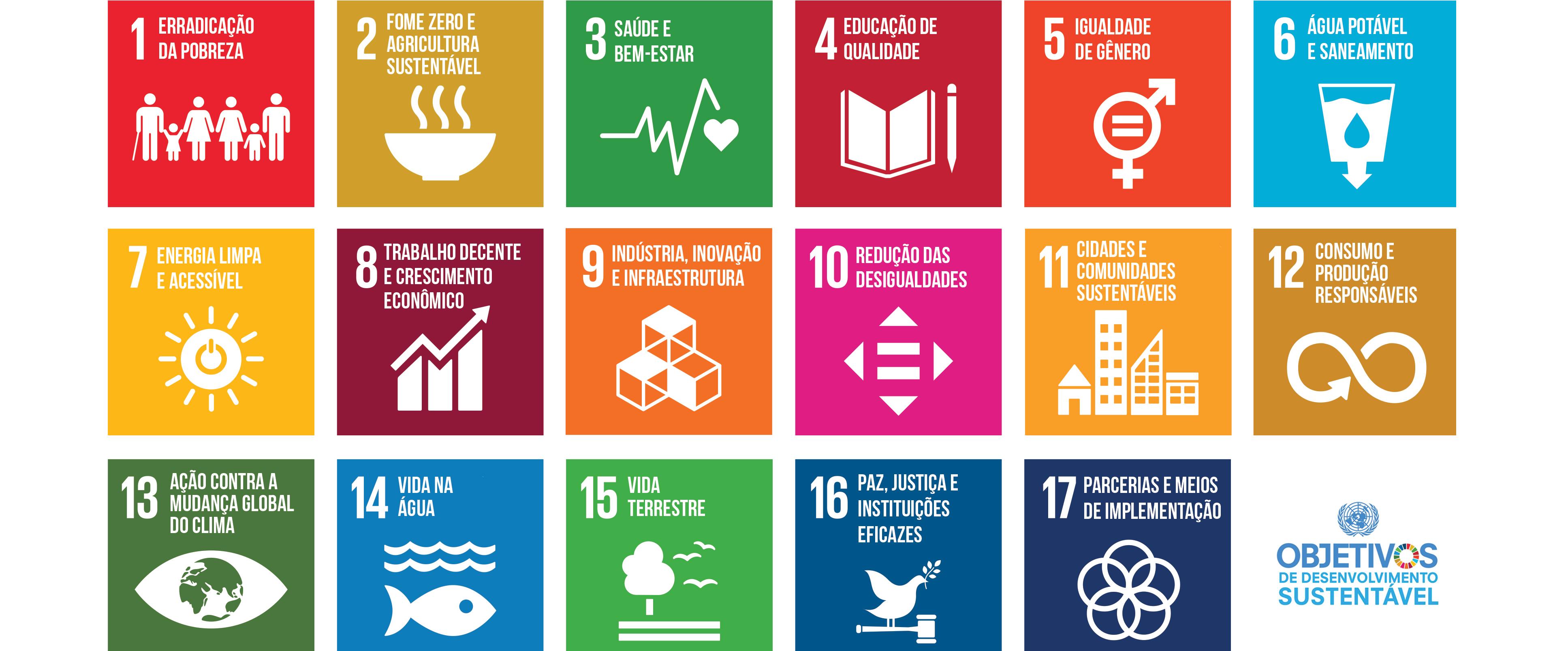 Cooperativas comprometidas com Agenda 2030