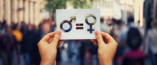 OCB terá comitês de juventude e de gênero