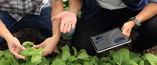 Agricultura de Precisão da Cotriel já está em 50 mil hectares