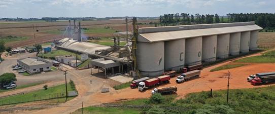 Cotribá investirá R$ 123 milhões em fábrica de ração e logística