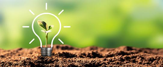 Dália Alimentos certificada por uso de energia limpa e renovável